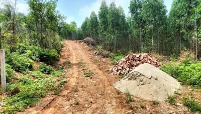 Vĩnh Phúc: Ngang nhiên xây dựng trái phép và khai thác gỗ trên đất rừng phòng hộ