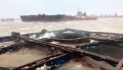 Cập nhật: Sẵn sàng điều máy bay cứu hộ 2 tàu cá gặp nạn trên biển