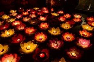 Giáo hội Phật giáo Việt Nam yêu cầu các chùa nhận tro cốt miễn phí, cầu siêu cho người tử vong do Covid-19