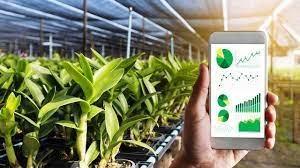Tín hiệu tích cực của chuyển đổi số trong nông nghiệp