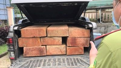 Quảng Ngãi: Phát hiện xe bán tải vận chuyển gỗ xẻ trái phép