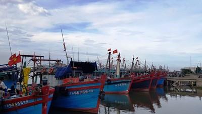 Thanh Hóa: Còn 3.246 lao động đang hoạt động trên biển