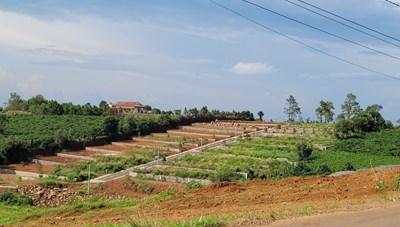 Lâm Đồng: Công an điều tra sai phạm đất đai ở TP Bảo Lộc