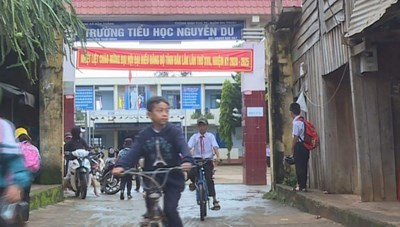Hình phạt dành cho nữ giáo viên đánh học sinh tím đùi ở Đắk Lắk?
