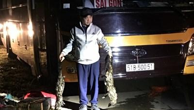 Xe khách vận chuyển nhiều động vật hoang dã trong đêm