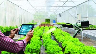 Số hoá - thay đổi diện mạo nông nghiệp Việt