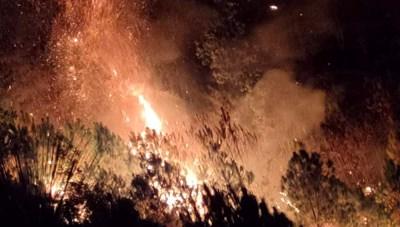 Hà Tĩnh: Cháy rừng lúc nửa đêm, hơn 300 người trằn mình dập lửa
