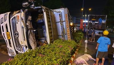 Bình Dương: Xe tải chở heo gặp nạn, hàng chục con heo văng xuống đường