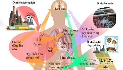 Tác động của ô nhiễm không khí tới hệ hô hấp