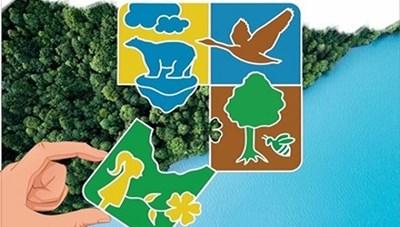 Hàng loạt địa phương hưởng ứng Tháng hành động vì môi trường gắn với phòng, chống dịch Covid-19