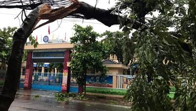 Bão số 9 đổ bộ Bình Định - Phú Yên