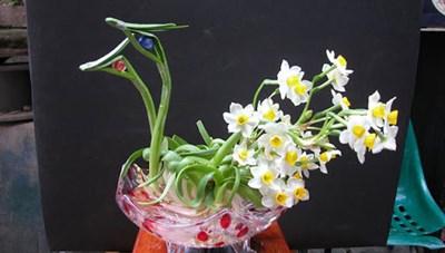 Bí quyết trang trí văn phòng làm việc bằng hoa tươi cực hay