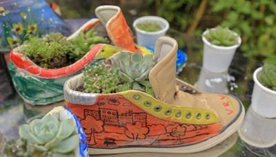 Nhóm sinh viên Hà Nội 'hoàn sinh' giày lỗi thành chậu cây để gây quỹ từ thiện