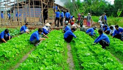 Bạc Liêu: Trí thức trẻ tham gia phát triển nông thôn ở vùng sâu, vùng xa