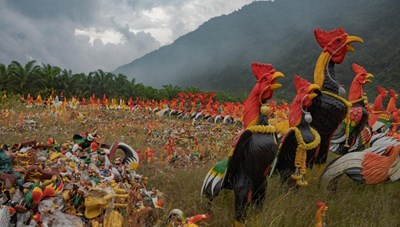 Ngôi chùa khách đến thăm dâng toàn tượng gà, chất đống thành nghĩa địa