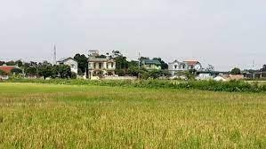 Hà Nam: 100% số xã đạt chuẩn nông thôn mới