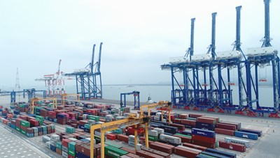 Nghịch lý lệ phí hạ tầng cảng biển