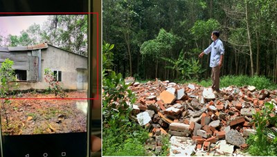 Định Quán (Đồng Nai): Cán bộ để người thân đốn hạ rừng phòng hộ