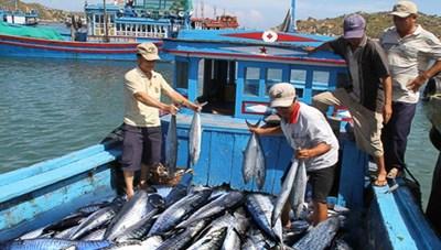 Ngành thủy sản quyết tâm gỡ 'thẻ vàng'