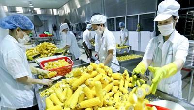 Nông sản năng động tìm kiếm thị trường