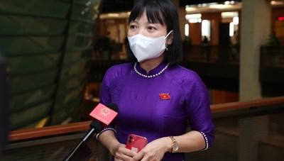 Phó Đoàn ĐBQH tỉnh Hải Dương: Đưa Luật Đất đai sửa đổi vào cho ý kiến sớm là hợp lý