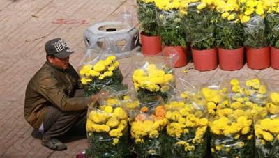 Người mua thưa thớt, TP HCM kêu gọi người dân ủng hộ tiểu thương bán hoa