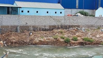 Thanh Hóa: Có dấu hiệu doanh nghiệp tiếp tục xả thải ra sông Lạch Bạng