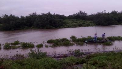 Ninh Bình: Nhiều thuyền nhỏ đi giăng lưới trong ngày mưa bão