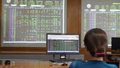 Thị trường chứng khoán Việt Nam năm 2020: Những mảng sáng-tối