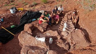 Phát hiện hóa thạch loài khủng long lớn nhất trên Trái đất?