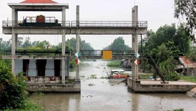 Đồng bằng sông Cửu Long: Xâm nhập mặn đạt đỉnh