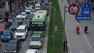 Cây phong lá đỏ và BRT Hà Nội