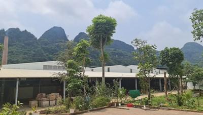 Nghệ An: Nhà máy sản xuất gạch tuynel không phép