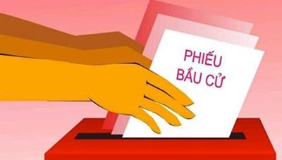 Giám sát trình tự bỏ phiếu, thể thức bỏ phiếu, kiểm phiếu