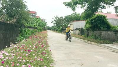 Hành trình vươn tới tỉnh nông thôn mới