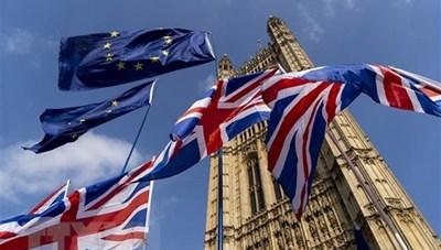 Đàm phán Brexit tạm hoãn do có thành viên mắc Covid-19