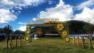 Tuần lễ hoa dã quỳ - núi lửa Chư Đăng Ya
