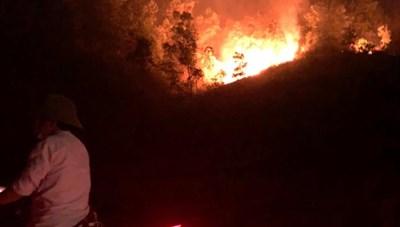Hà Tĩnh: Khống chế được cháy rừng tái phát vào 1h sáng