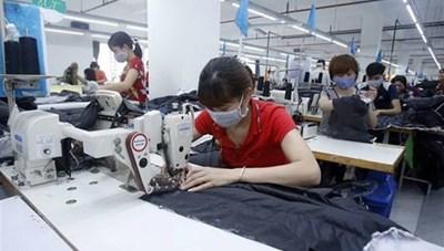 TP Hồ Chí Minh: Gần 385 tỷ đồng hỗ trợ các doanh nghiệp bị ảnh hưởng dịch Covid-19