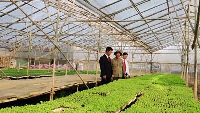 Agribank hành động vì màu xanh tương lai