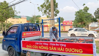 """Phật tử chùa Ba Vàng tham gia """"giải cứu"""" gần 100 tấn rau"""