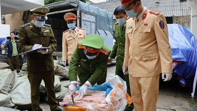 Thu giữ 3,3 tấn nầm lợn đông lạnh bị nấm mốc