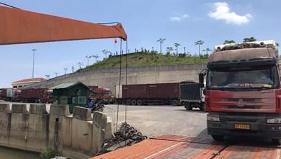 Quảng Ninh: Thông quan trở lại mặt hàng thanh long qua Móng Cái