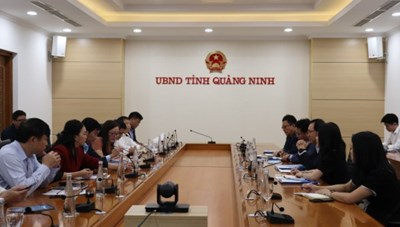 Samsung hỗ trợ doanh nghiệp Quảng Ninh tham gia vào chuỗi giá trị toàn cầu