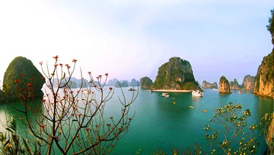 Quảng Ninh: Cú hích 500 tỷ phục hồi ngành du lịch