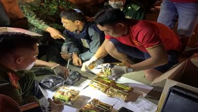 Bắt đối tượng vận chuyển 11 kg ma tuý từ Quảng Trị vào TP HCM