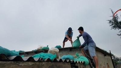 Người dân vùng tâm bão số 13 khẩn trương giằng chống nhà cửa, sơ tán đến nơi an toàn