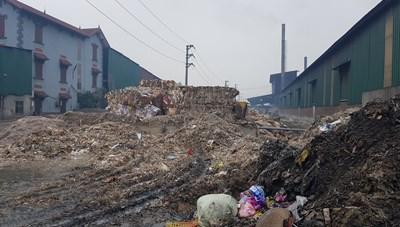 Vi phạm về môi trường, 8 doanh nghiệp ở CCN Phú Lâm bị đình chỉ, xử phạt gần 2,5 tỷ đồng