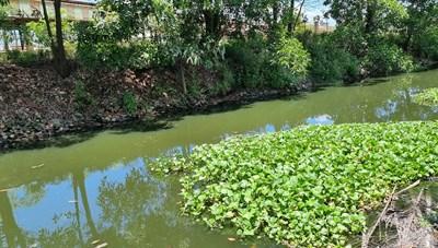 Dân khốn khổ vì kênh tiêu thủy lợi dẫn nước xả thải từ khu công nghiệp