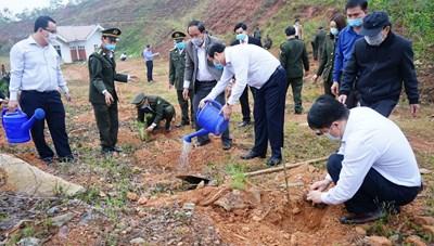 Quảng Nam: Phát động phong trào 'Tết trồng cây' xuân Tân Sửu 2021